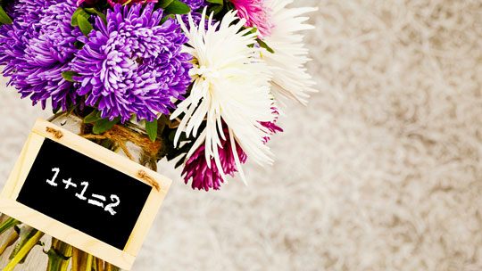 The Importance of Flowers in Everyday Life