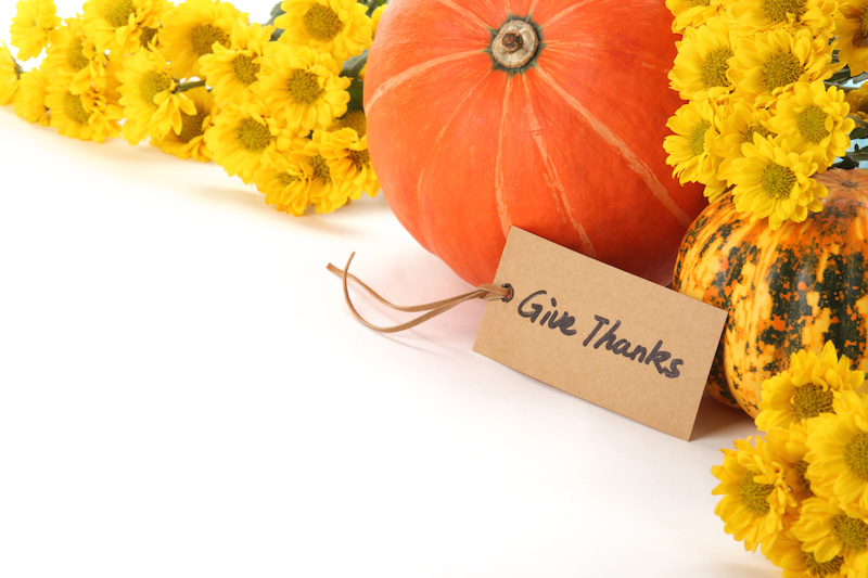 Thanksgiving Gift Ideas – The Gift of Fresh Flowers