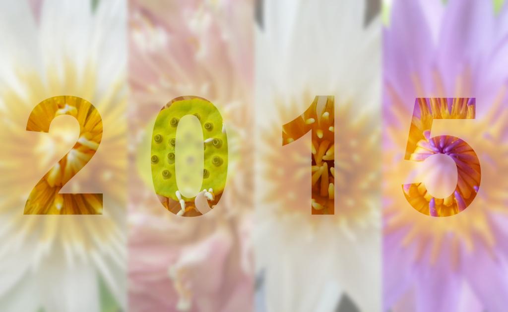 Fresh Flowers for a Fresh Start 2015