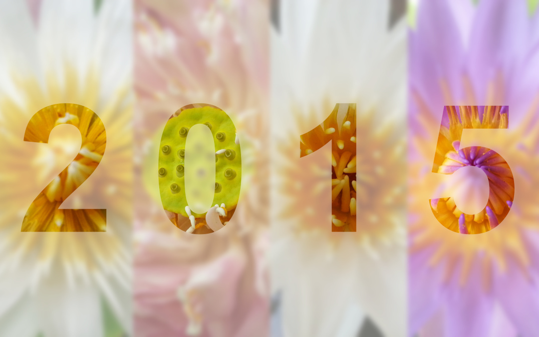 5 Reasons to get Fresh Flowers for a Fresh Start in 2015