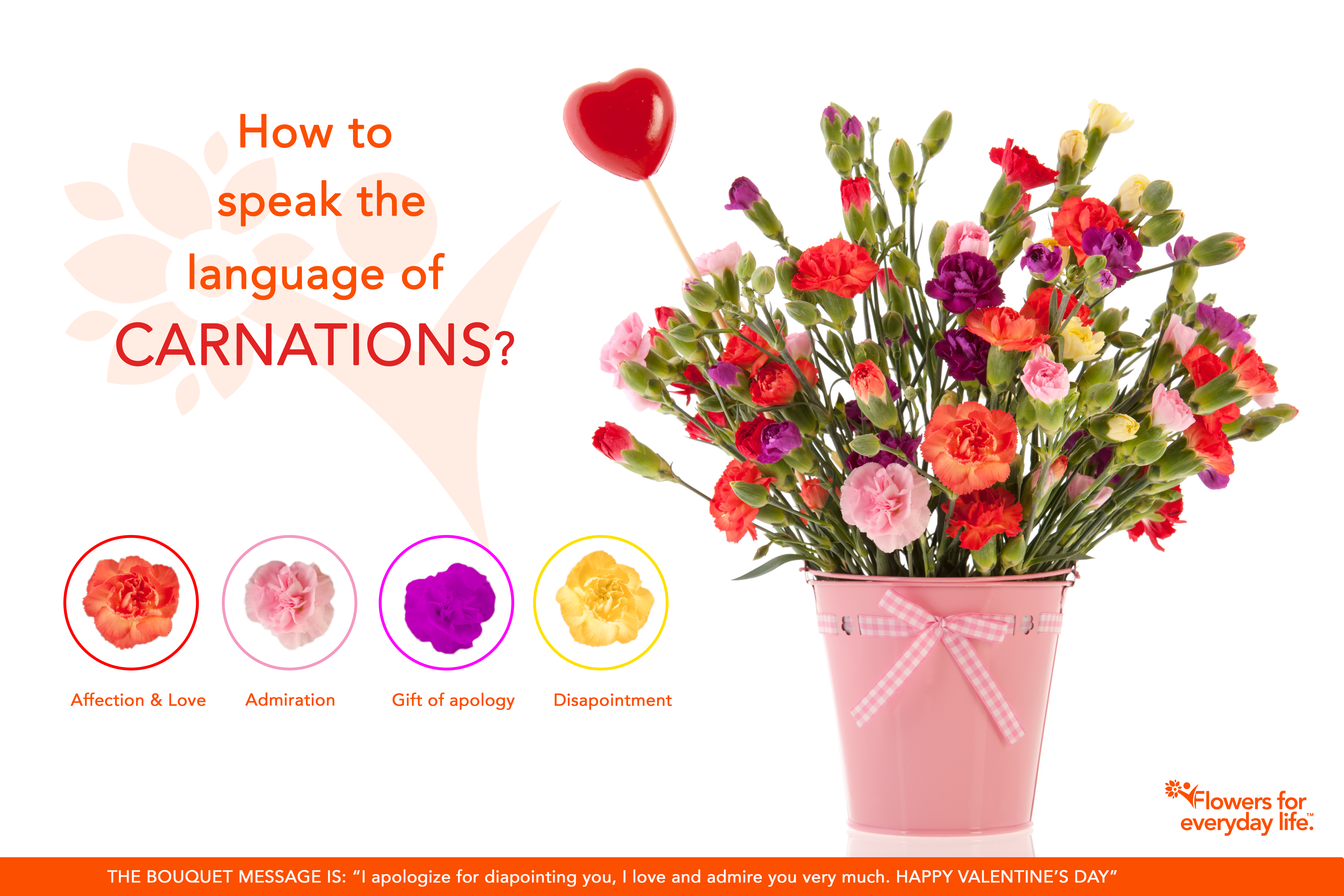 Carnations For Valentines Day Learn Their Secret Language